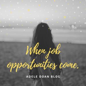 Nhân một ngày được offer job - Adele Doan Blog