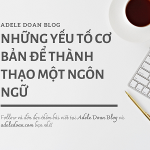 Những yếu tố cơ bản để thành thạo một ngôn ngữ - Adele Doan Blog